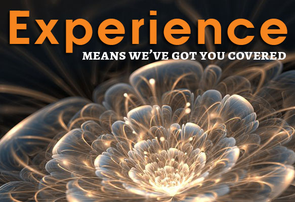 experience at sumner mckenzie inc computer consulting and websites